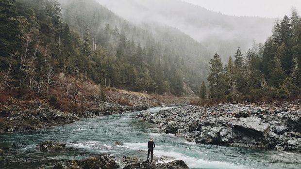 Voyage nature: pourquoi faut-il en profiter?